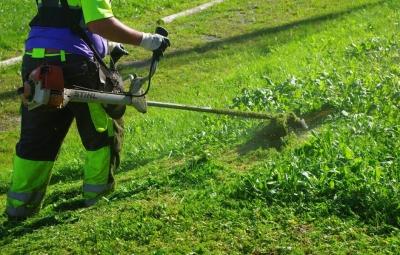 Mantenimiento - Jardinería Nomeolvides