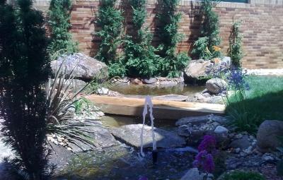 Estanque - Jardinería Nomeolvides